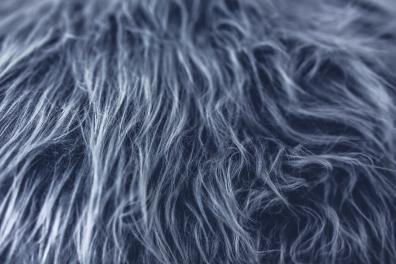 texture-designer-grey-fur